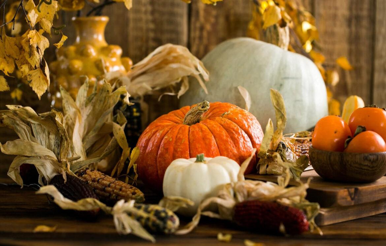 ¿Cómo se dice Día de Acción de Gracias en Inglés?